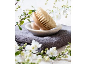 body brush for natural beauty and washing up routine