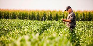 cp_UA-7_seedtoharvest_northeast_article_2