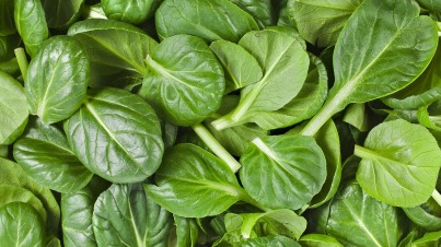 spinach-leaves.jpg